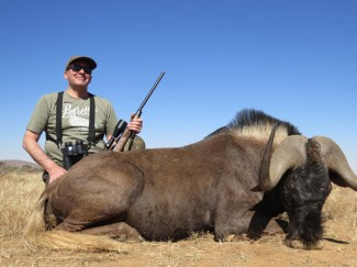Black-Wildebeest---Guided-hunt-Namibia