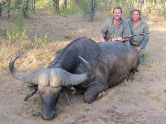 Buffalo-Hunt-in-Zimbabwe