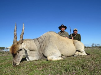 Cape-Eland-Bull-hunt-Trophy