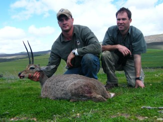 Vaal-Rhebuckon-Africa-Safari-hunt