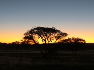 Hunting-in-Namibia-africa-05