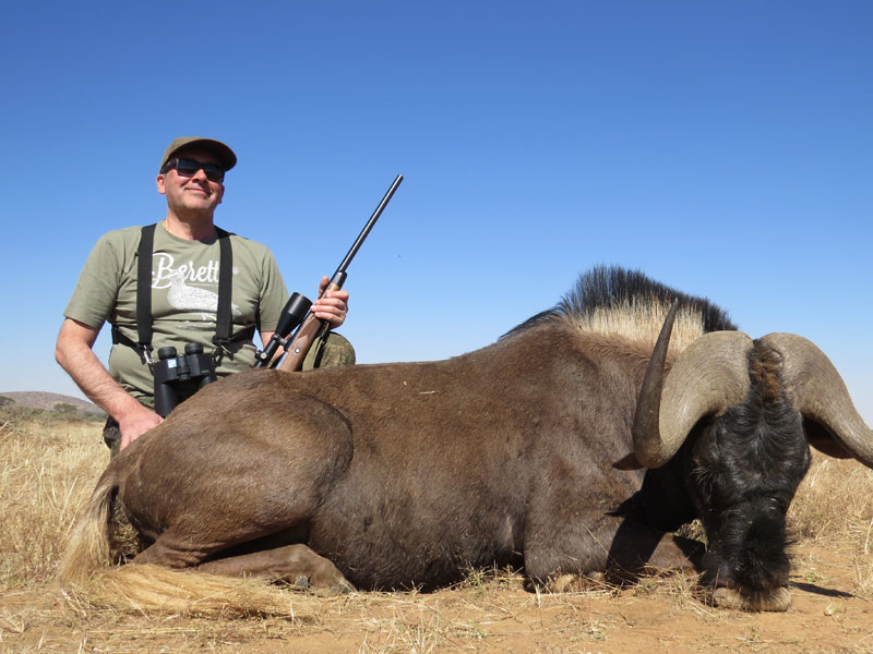 Black Wildebeest Guided hunt Namibia
